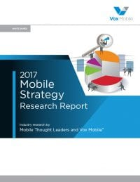Mobile Strategy Research Report (2017)