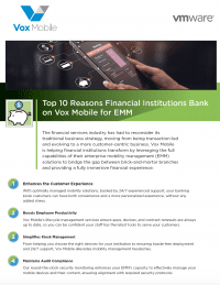 Top 10 Reasons Financial Institutions Bank on Vox Mobile